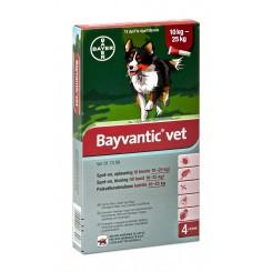 Bayvantic Vet. hund 10 - 25 kg