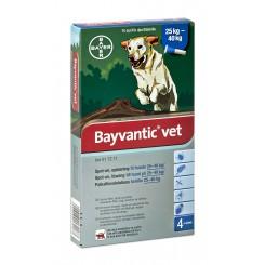 Bayvantic Vet. hund 25 - 40 kg