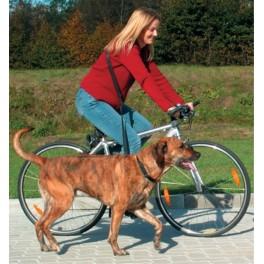 Cykel- og joggingline